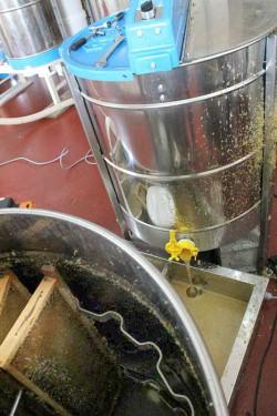 Matériel d'extraction du miel de Bonnechère