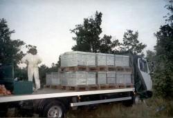 Ruches de Bonnèchere en transhumance par camion