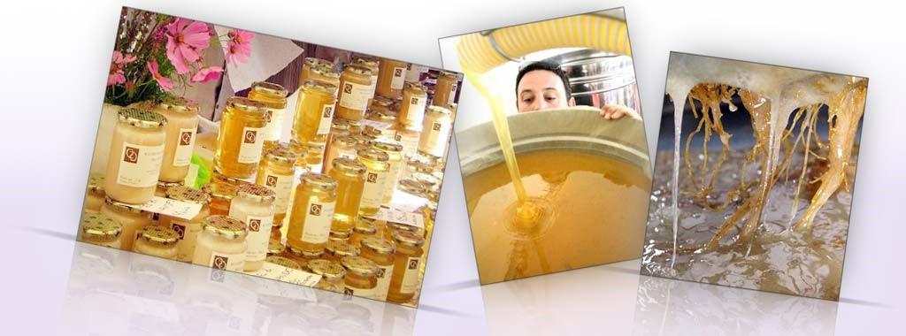 Le miel de Pays des Ruchers de Bonnechère